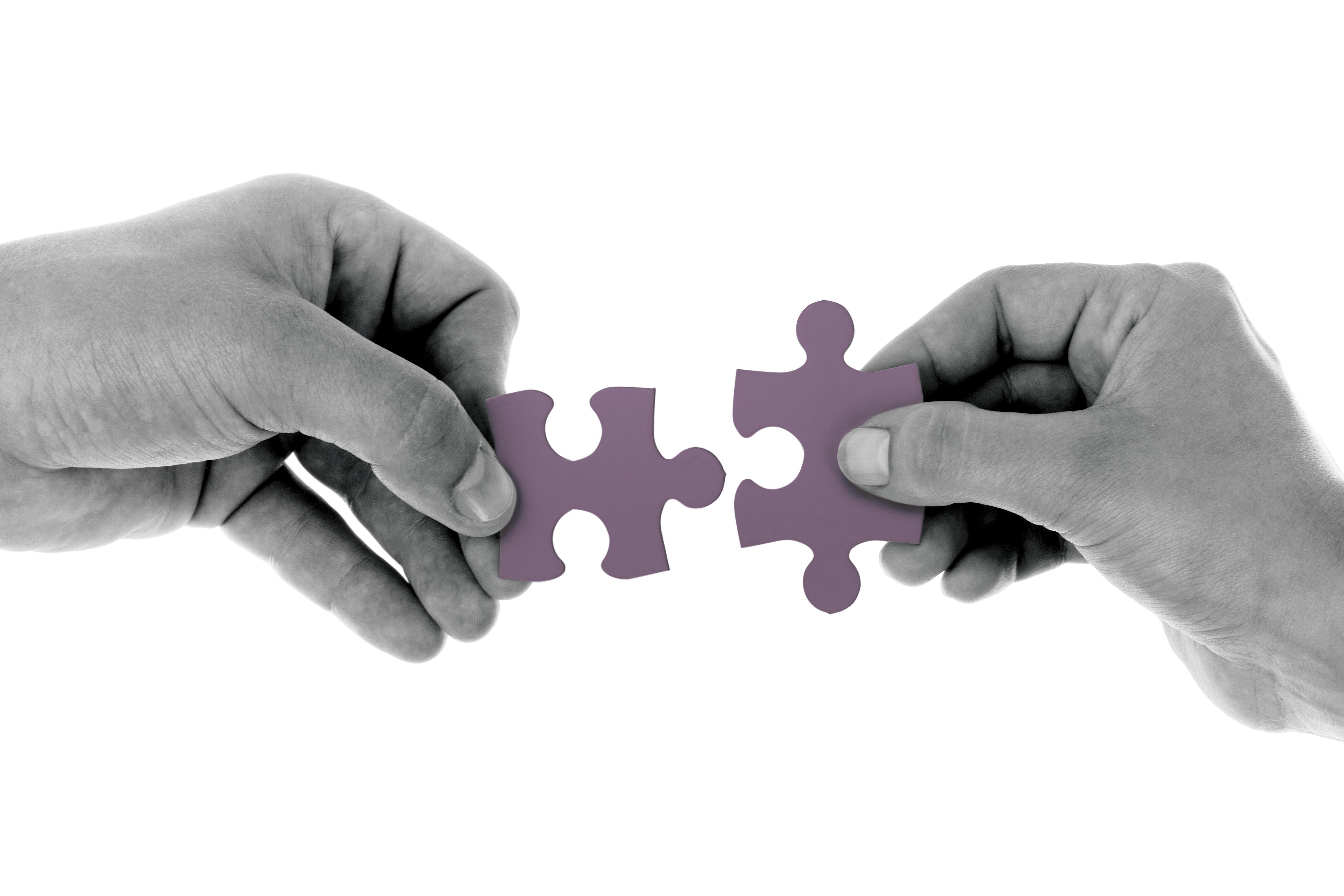 Embracing Organizational Ambidexterity